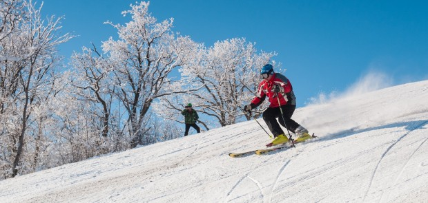 "Attention to investors! Investment competition for the construction of the ski resort ""Pirogovo"" is being prepared"